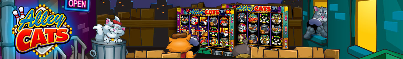 Alley Cats Banner