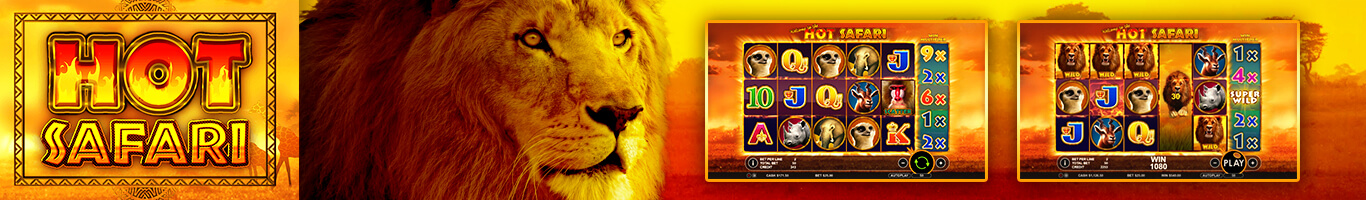 Hot Safari Banner